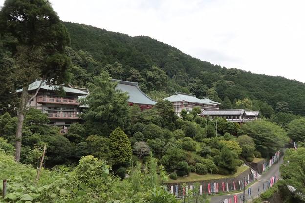Photos: 本福寺1