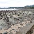 Photos: 浜辺4