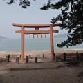 Photos: 浜辺5