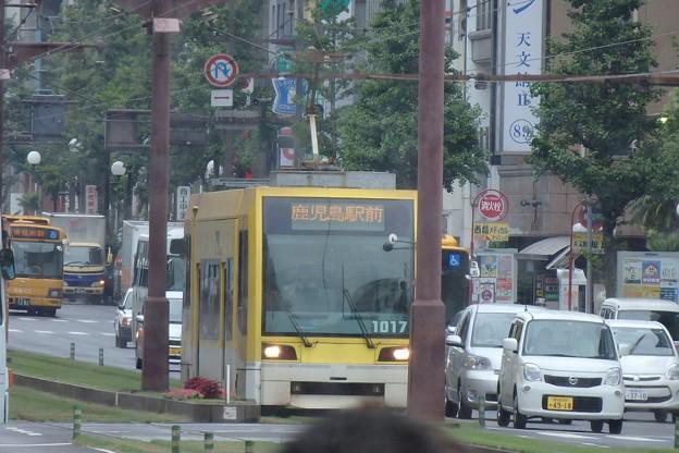 チンチン電車(鹿児島)1