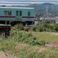 ヒガンバナ1 電車と