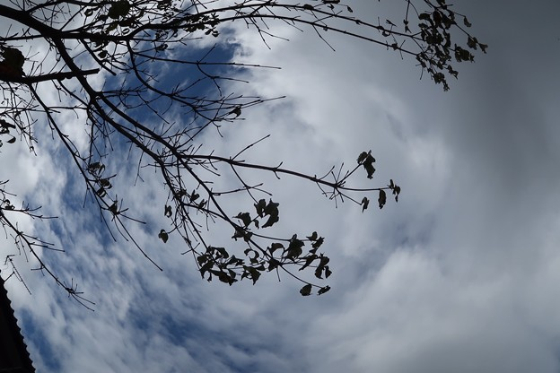 Photos: 台風後の空~