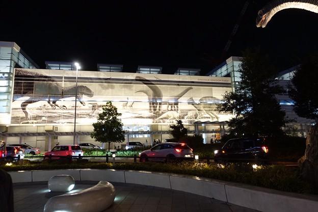 夜景1  福井駅