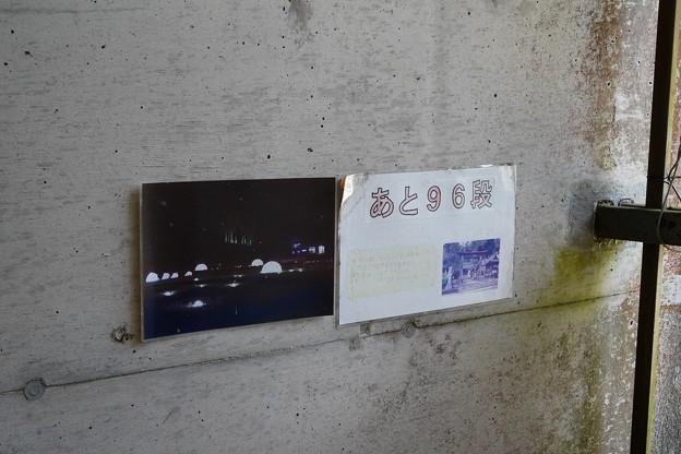 宇都井駅 (4)