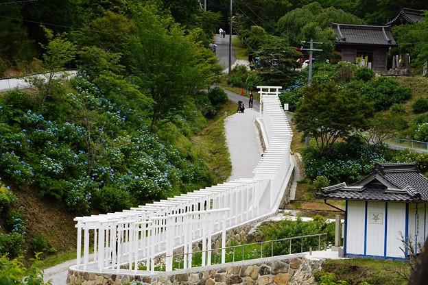 済渡寺 (7)