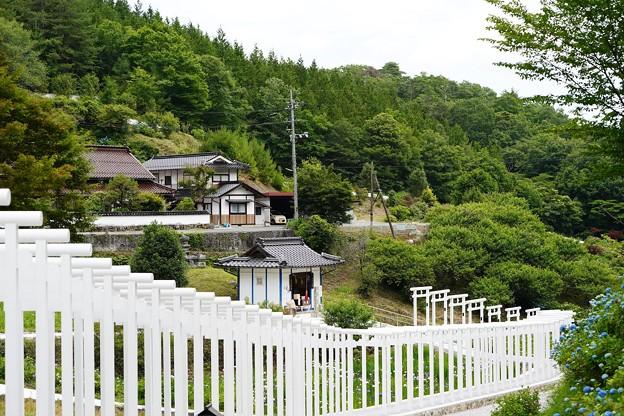 済渡寺 (6)