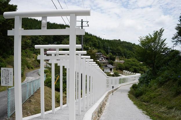 済渡寺 (1)