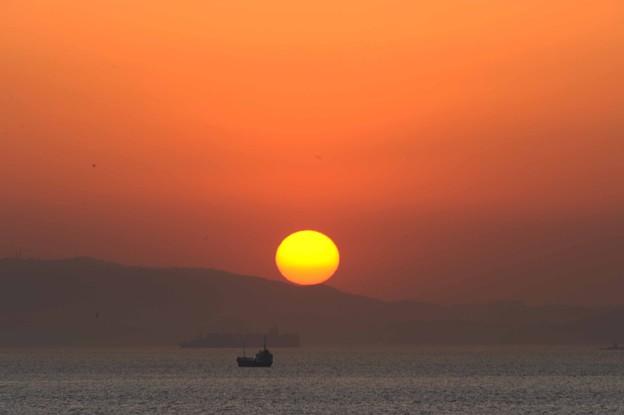 39 黄色太陽