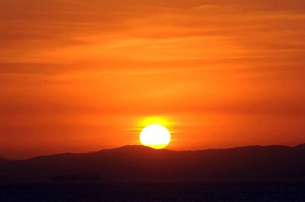 65 ひょっこり太陽