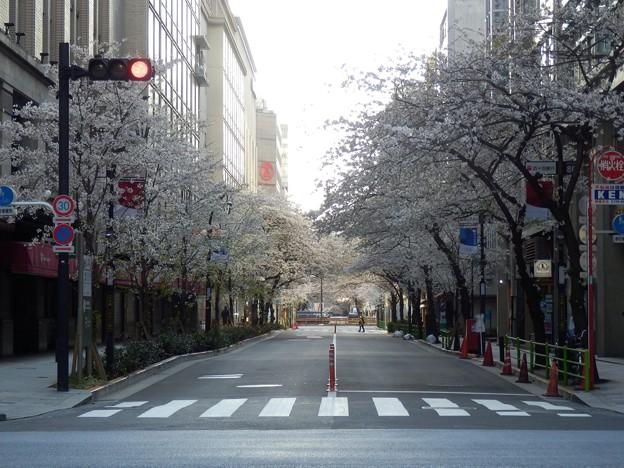 2021/03/27_日本橋2丁目_1