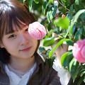 Photos: 乙女椿