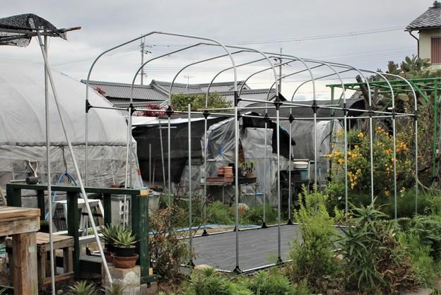 園芸温室 NH-20D型