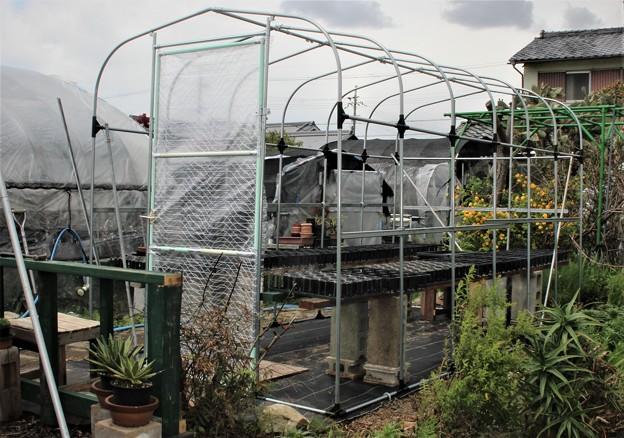 ハウスの栽培棚