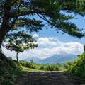 Photos: 山道を上ると