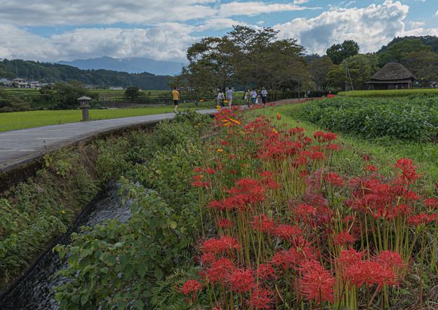 Photos: 原尻の滝へ
