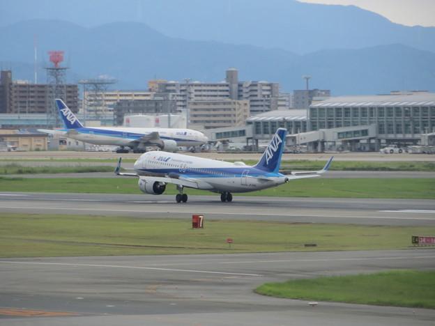 ANA  A320neo ランディング 2
