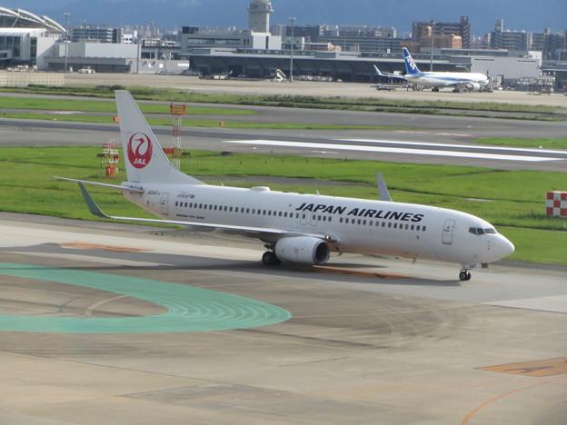 JAL  B737-800 到着