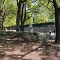 野川公園テニス・壁打ち