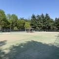 都立野川公園テニスコート