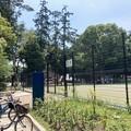 井之頭公園テニスコート