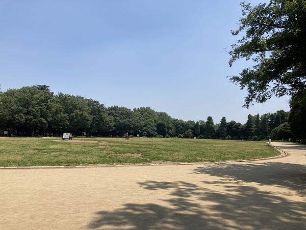 井の頭恩賜公園 競技場 陸上トラック (三鷹市)