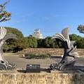 城見台公園・姫路城大天守の鯱瓦
