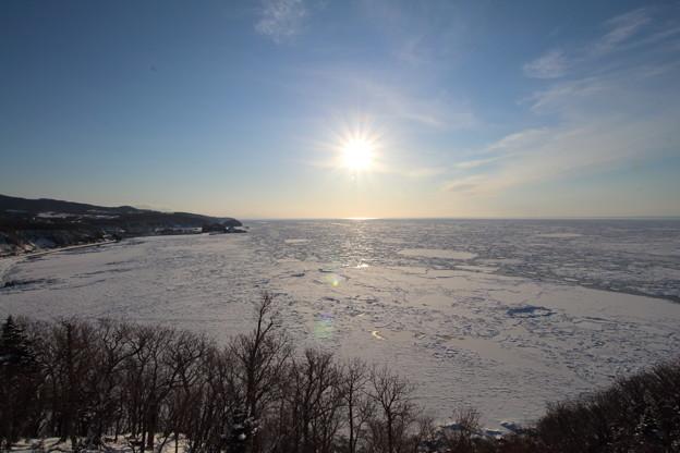 Photos: 流氷原