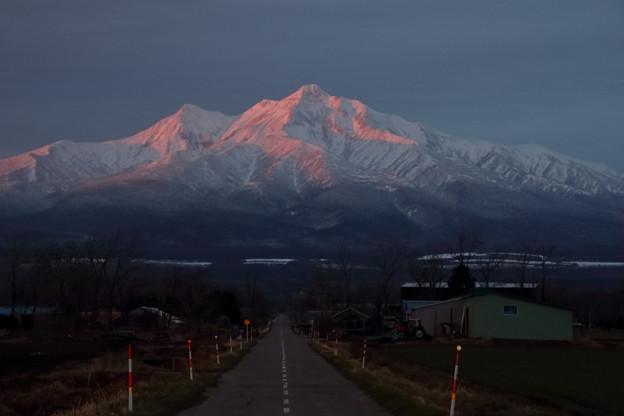 Photos: 朝焼けを受ける斜里岳
