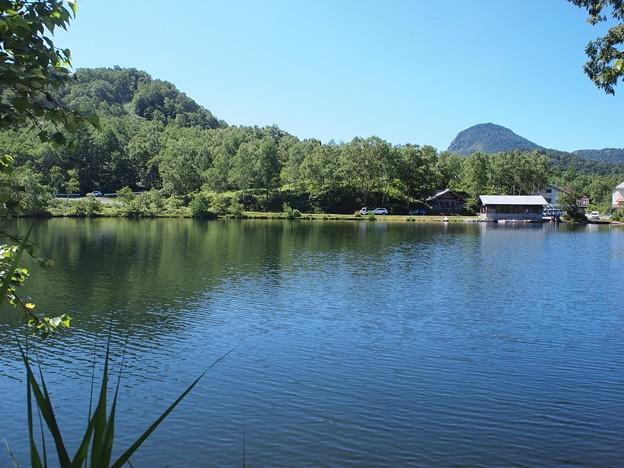 木戸池 (1)