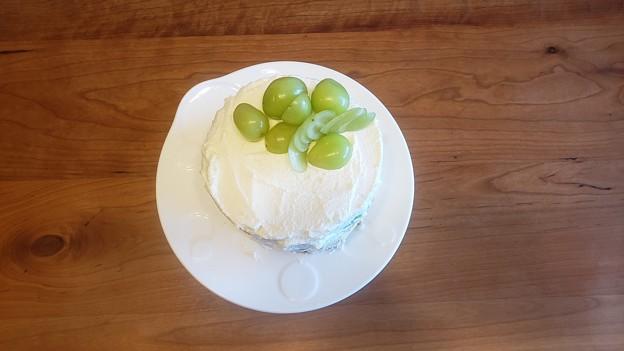 Photos: シャインマスカットのケーキを作った、粉砂糖無くてお化粧無しのスッピンで