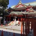 Photos: 2月_京浜伏見稲荷神社 1