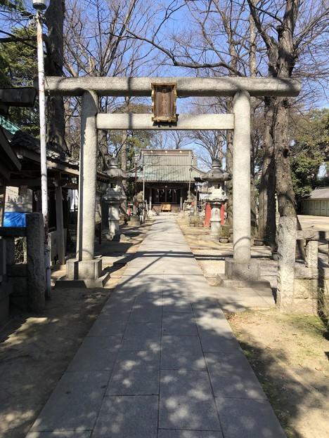 2月_日枝神社 2