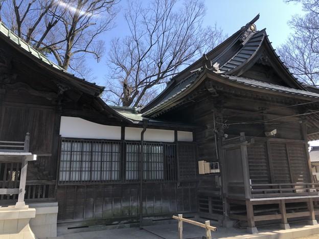 2月_日枝神社 6