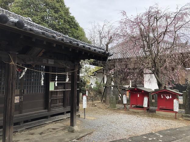 3月_稲荷神社 3