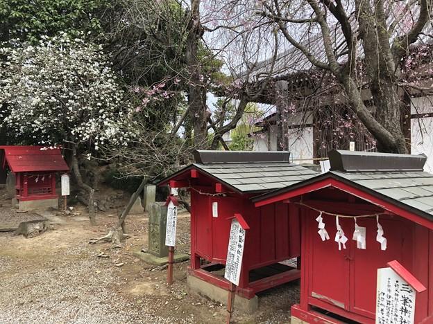 3月_稲荷神社 4