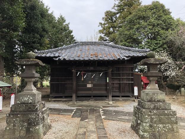 3月_稲荷神社 2