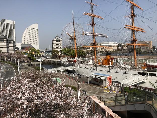 3月_帆船日本丸 2