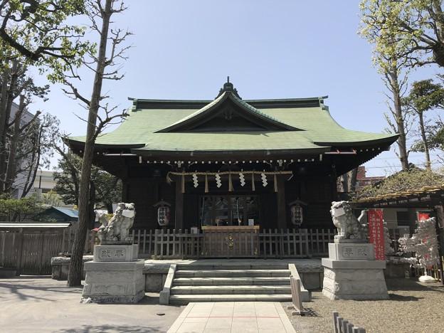 3月_日枝神社 1
