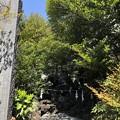 4月_下石神井御嶽神社 4