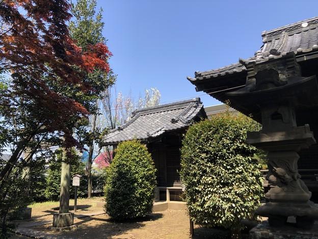 4月_下石神井御嶽神社 2