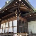4月_鷺宮八幡神社 3
