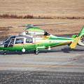 Photos: 中日本航空 Eurocopter AS365N2 Dauphin 2 JA21DH IMG_7143-3