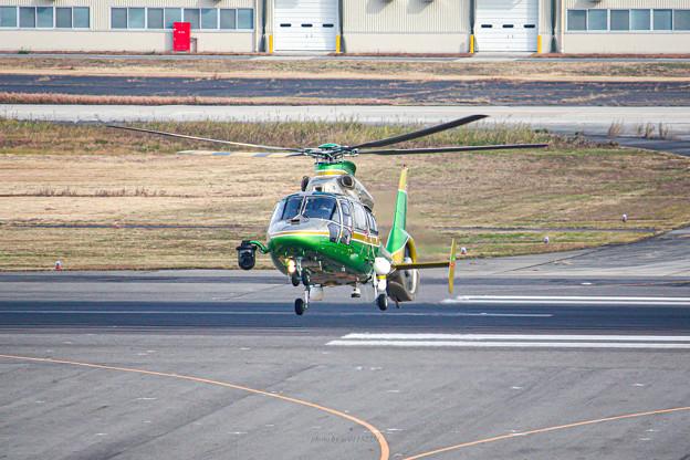 中日本航空 Eurocopter AS365N2 Dauphin 2 JA21DH IMG_7128-3