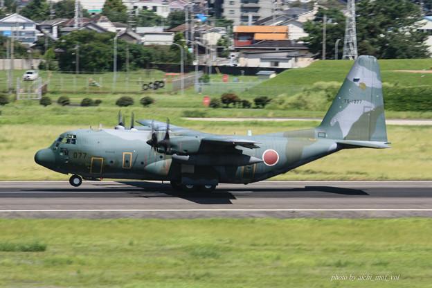 航空自衛隊 第1輸送航空隊 第401飛行隊 C-130H 輸送機 75-1077 IMG_6589-2