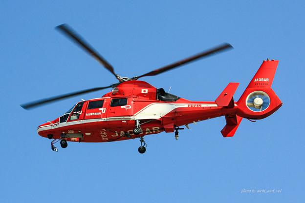 名古屋市消防航空隊 エアバスヘリコプターズ AS365N3 Dauphin2 JA08AR ひでよし IMG_6240-2
