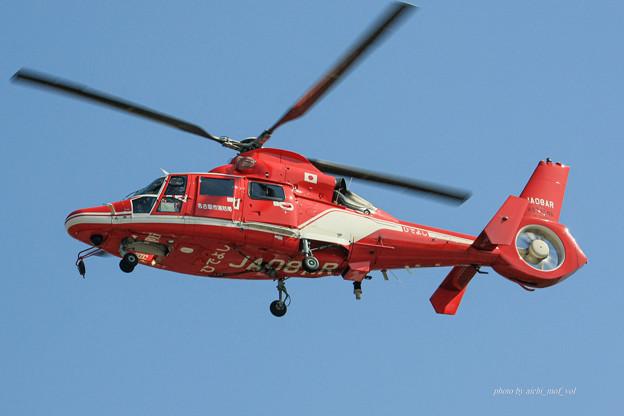 名古屋市消防航空隊 エアバスヘリコプターズ AS365N3 Dauphin2 JA08AR ひでよし IMG_6239-2
