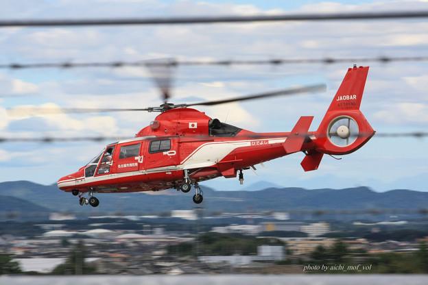 名古屋市消防航空隊 エアバスヘリコプターズ AS365N3 Dauphin2 JA08AR ひでよし IMG_6769-2