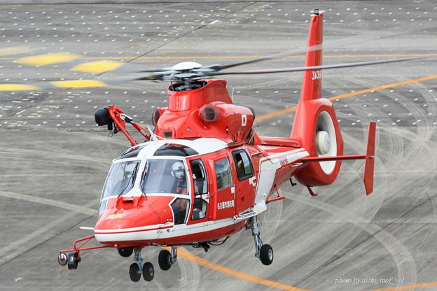 名古屋市消防航空隊 エアバスヘリコプターズ AS365N3 Dauphin2 JA08AR ひでよし IMG_6789-2