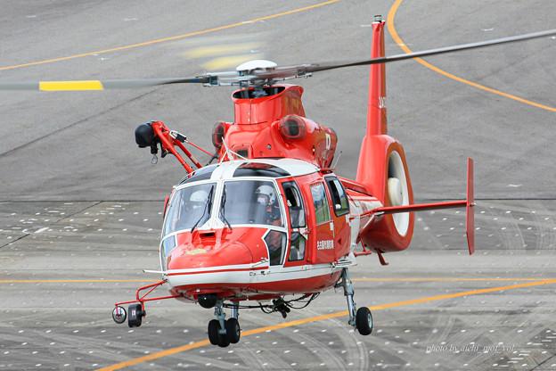 名古屋市消防航空隊 エアバスヘリコプターズ AS365N3 Dauphin2 JA08AR ひでよし IMG_6788-2