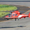 Photos: 名古屋市消防航空隊 エアバスヘリコプターズ AS365N3 Dauphin2 JA08AR ひでよし IMG_6910-2